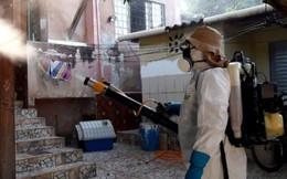 TPHCM thêm 10 ca nhiễm Zika chỉ trong 1 ngày