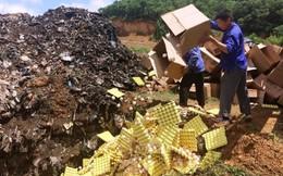 Tiêu hủy hơn 100 nghìn quả trứng gà không rõ nguồn gốc