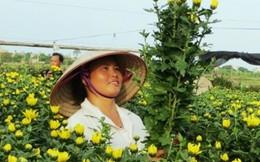 Thêm gần 6,5 nghìn phụ nữ nghèo được vay vốn