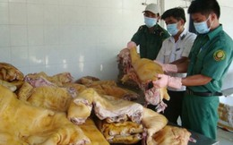 Sử dụng động vật chết do bệnh chế biến thực phẩm bị phạt đến 100 triệu đồng