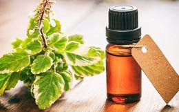 10 loại tinh dầu giúp làm giảm cơn đau do bệnh gout gây ra