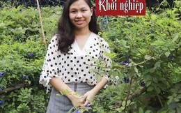 Cô gái muốn nhân rộng mô hình nông nghiệp gần gũi với 'mẹ thiên nhiên'
