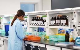 Hãng dược nước ngoài đầu tiên ở Việt Nam được nhập khẩu thuốc trực tiếp