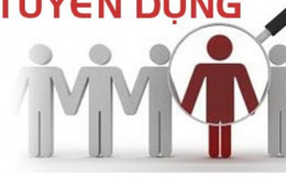 Thông báo tuyển kế toán kiêm trợ lý hành chính dự án