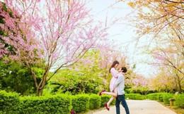 Tình yêu đong đầy trong sáng đầu xuân