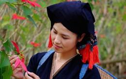 Chói ngời sắc đỏ hoa Trạng nguyên ở Vườn Quốc gia Xuân Sơn
