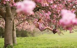 Người mẫu làm 'tắc kè hoa' hòa cùng thiên nhiên