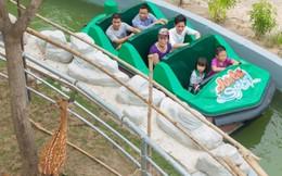 Du thuyền trên sông ngắm động vật hoang dã ngay tại thủ đô Hà Nội