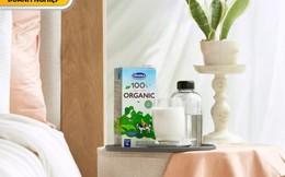 Sữa tươi 100% organic đầu tiên sản xuất tại Việt Nam ra mắt