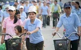 Chỉ 1,5% lao động đi làm việc ở nước ngoài đóng BHXH