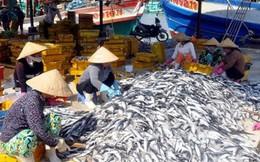 Đề nghị Chính phủ tiếp tục hỗ trợ ngư dân miền Trung