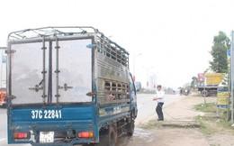 Nghệ An: Triển khai cấp bách giải pháp phòng chống dịch tả lợn Châu Phi
