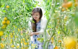 Trải nghiệm tour nhà vườn tại Đà Lạt