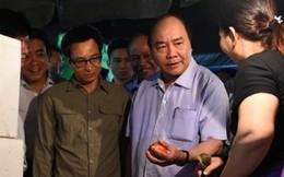 Thủ tướng đi chợ Long Biên kiểm tra rau quả từ mờ sáng