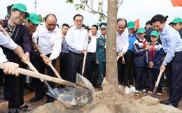 Thủ tướng dự Lễ phát động Tết trồng cây năm 2019