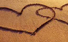 Muốn ly hôn vì bỗng dưng thấy tình cảm vợ chồng nhạt nhẽo