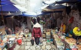 Việt Nam là 1 trong 10 điểm đến không nên bỏ lỡ vào mùa thu