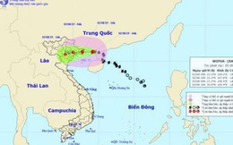 Chiều nay, bão số 3 đi vào vùng biển Quảng Ninh-Hải Phòng