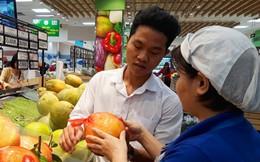 Bưởi diễn, gà đồi Yên Thế có mặt ở siêu thị Sài Gòn