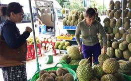 Mùa cây rộ trái, người tiêu dùng tha hồ chọn các loại quả ngon, rẻ