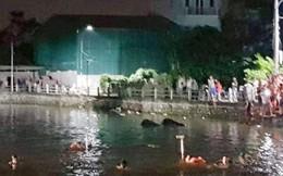 Hà Nội: Lật thuyền đạp vịt, 2 cháu nhỏ tử vong