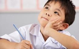 Trẻ vào lớp 1, chọn trường công hay tư