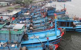 Bão số 5 mạnh thêm, đi vào đất liền từ Quảng Ngãi đến Khánh Hòa