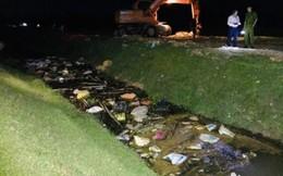Lợn nghi nhiễm dịch tả lợn châu Phi chết trôi đầy kênh ở Hà Tĩnh