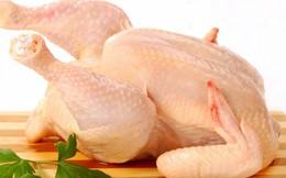 Brazil thu hồi 464 tấn thịt gà do nhiễm khuẩn salmonella