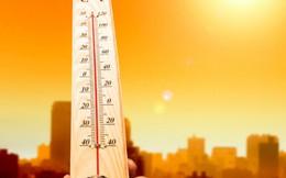 5 tuyệt chiêu chống nóng cho nhà phố ít tốn kém