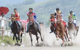 Bóc lột sức lao động khi biến trẻ em thành nài ngựa ở Indonesia
