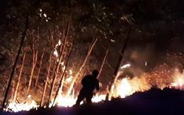 Quảng Nam: Hàng trăm người nỗ lực dập cháy rừng xuyên đêm