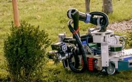 Robot làm vườn cắt tỉa hoa hồng và cây cảnh chính xác từng centimet
