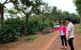 Phú Riềng (Bình Phước): Nhiều dấu hiệu vi phạm tố tụng, bỏ lọt tội phạm trong vụ hỗn chiến