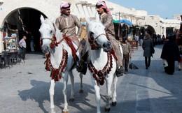 """""""Lạc"""" giữa phiên chợ Ba Tư ở Doha"""