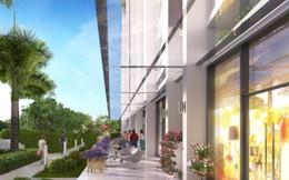 3 lý do căn hộ Marina Riverside thu hút khách hàng trẻ