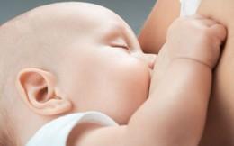 Tìm ra loại kháng sinh mới từ sữa mẹ