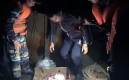 Tạm giữ 500 tấn nội tạng động vật trên 7 tàu Trung Quốc được ghi là thịt trâu