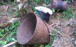 Tìm thấy 2 thi thể ở nơi 5 phụ nữ mất tích trong rừng
