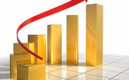 Chuyên gia kinh tế: Không đầu tư vàng để sinh lời thời điểm này!