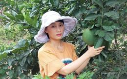 Phát triển nông nghiệp hữu cơ bằng cái tâm của người sản xuất