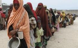 Bữa ăn cơ bản ở các nước càng nghèo càng đắt đỏ