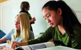 Sức hấp dẫn của chương trình hướng nghiệp cho học sinh ở Mỹ