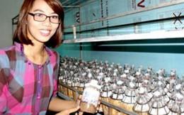 Cô sinh viên mang tiền mua xe máy lấy vốn trồng nấm khởi nghiệp