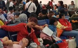 Sân bay Tân Sơn Nhất như họp chợ ngày cận Tết