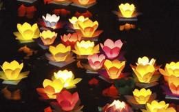 Sách Phật pháp, máy tụng kinh, đèn hoa đăng đắt hàng dịp lễ Phật đản