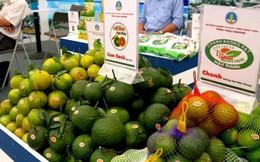 9 tỉnh 'cần rút kinh nghiệm' về an toàn thực phẩm