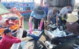 Đường dây nóng hỗ trợ mua hải sản ngư dân miền Trung