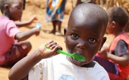 Nghịch cảnh lãng phí lương thực trong khi trẻ chết đói gia tăng