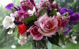 Những ghi nhớ giúp cắm hoa tươi lâu không dùng hóa chất